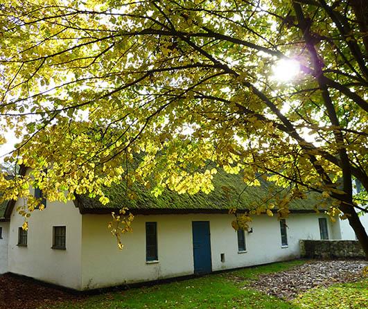 old farmhouse in the autumn