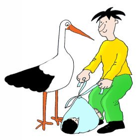baby boy delivered by stork