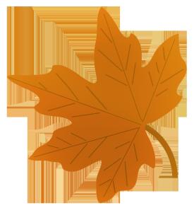 fall leaf drawing
