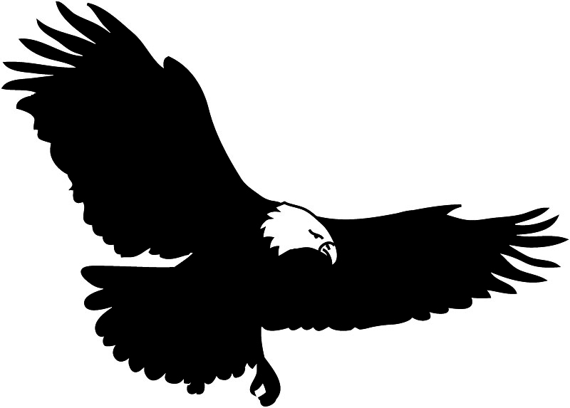 flying bald eagle clipart