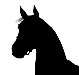 silhouette head of horse