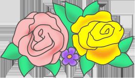 flower drawings two roses
