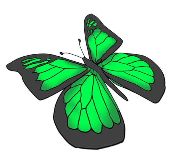 green butterfly drawing