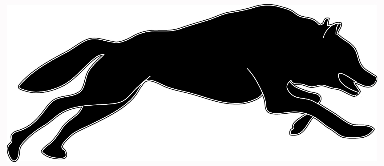 black white silhouette hunting wolf