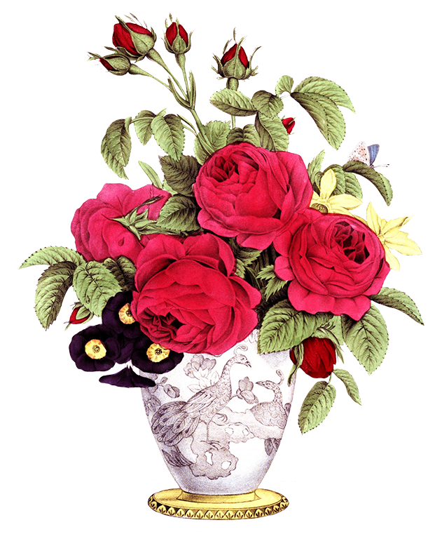 vase with rose flowers