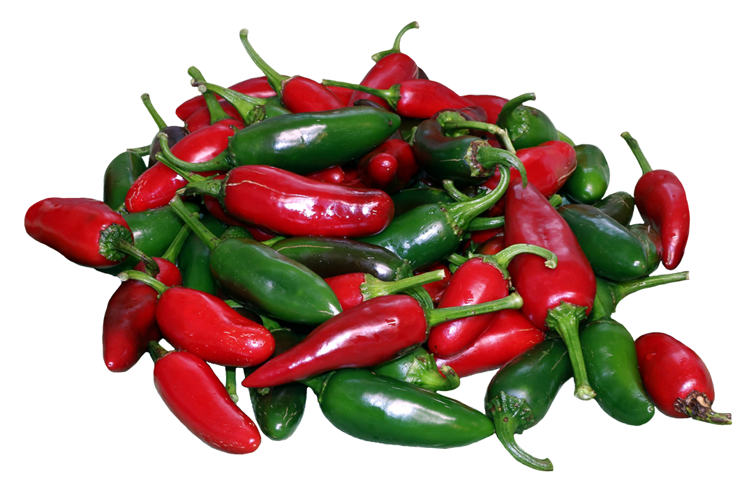 Jalapenos clipart