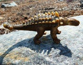 Thyreophora dinosaur pictures