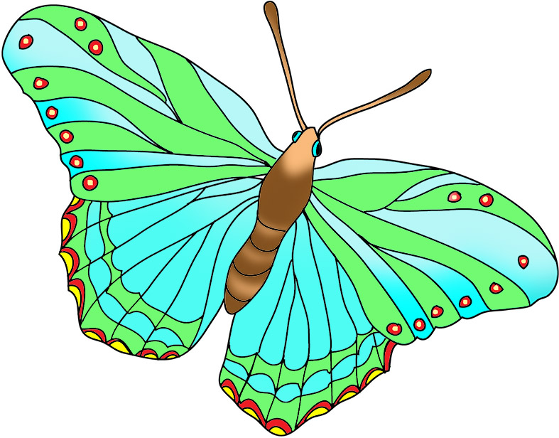 colorful green butterfly