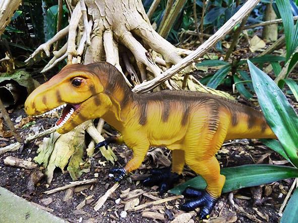 Brown Tyrannosaurus Rex