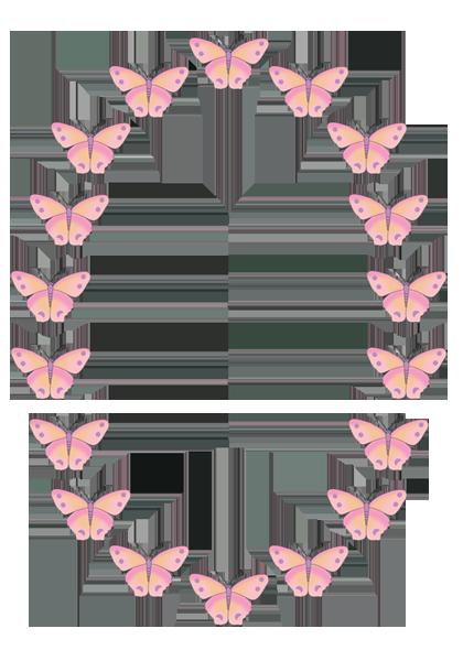 Oval pink butterfly frame