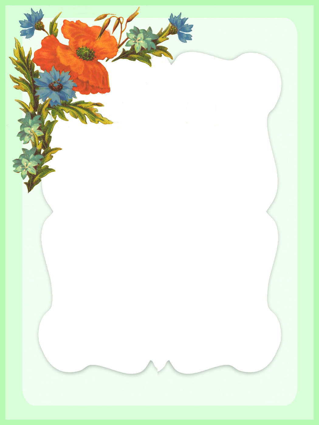 green frame with poppies and cornflower