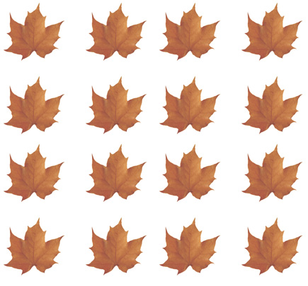fall leaves clipart background