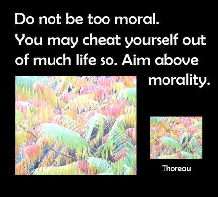 quotes about moraliti and life