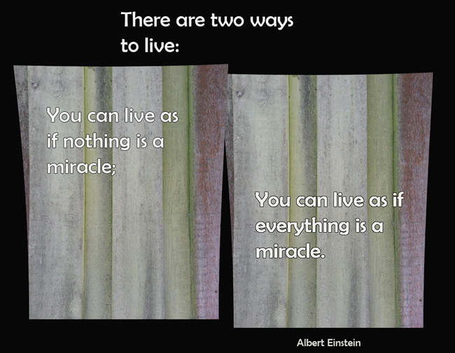 quote about life and miracles