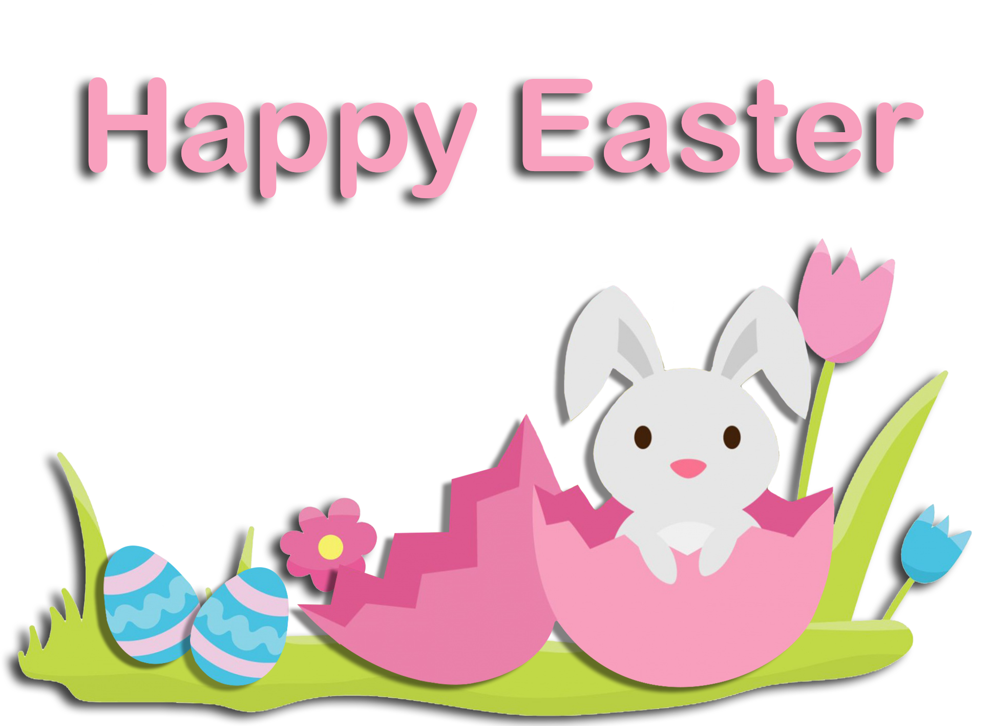Happy Easter bunny in egg shell