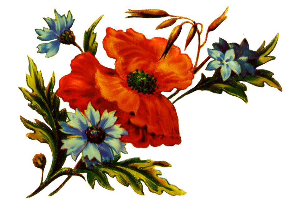floral clipart for decoration
