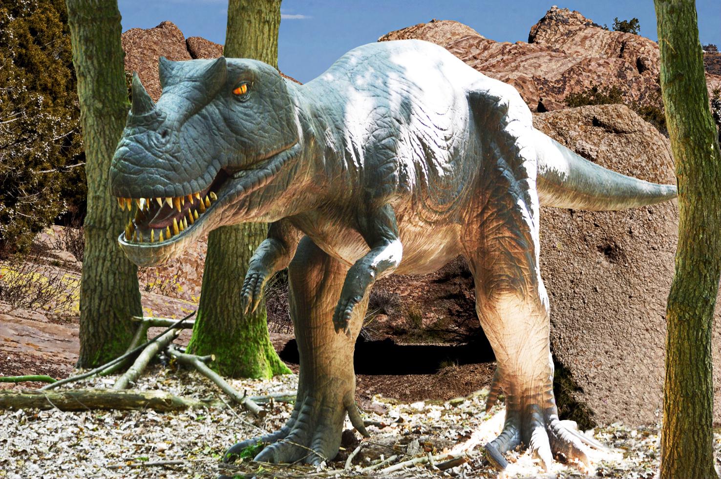 dinosaur picture of carnivore dinosaur