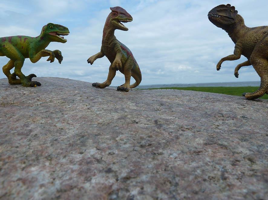 three dinosaurs fighting