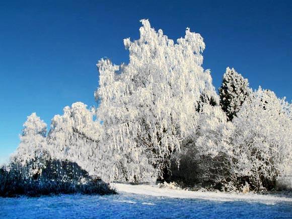 winter-snow-scenes