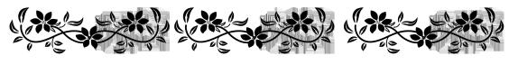 a black and white flower border
