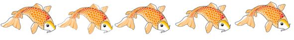 koi fish border orange