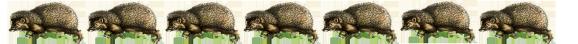 hedgehog border