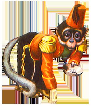 Circus monkey asking for money
