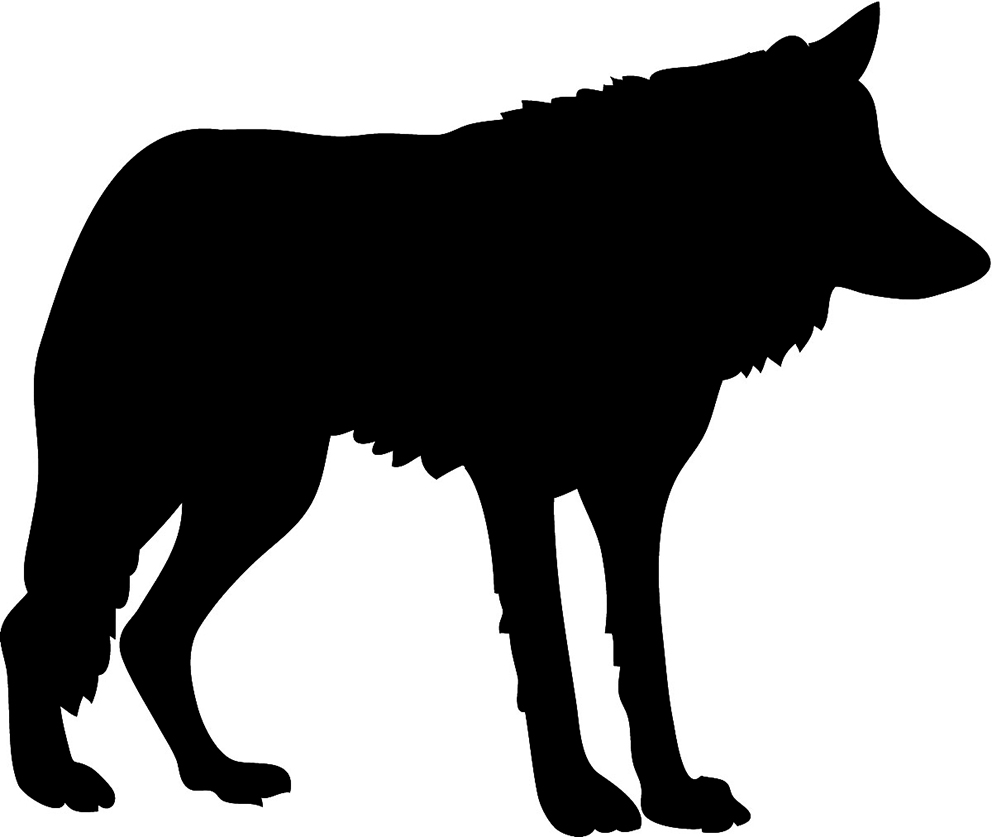 This is an image of Exhilarating Wolf Silhouette Drawing