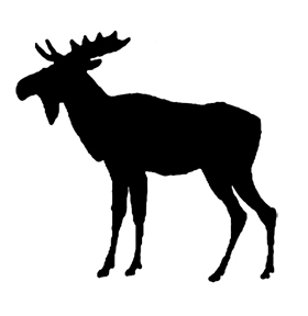 animal silhouette moose