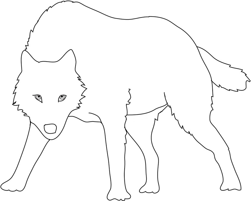 siilhouette sketch of angry wolf