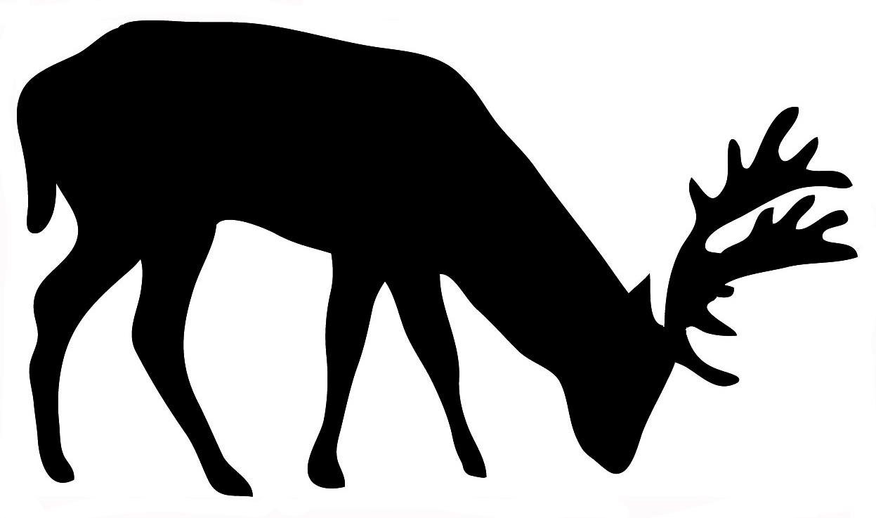 deer silhouette of grazing stag