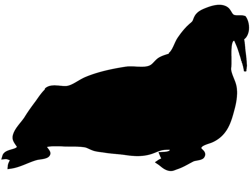 walrus silhouette in black