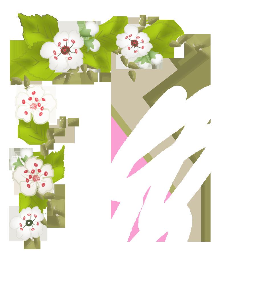 apple blossom flower frame corner