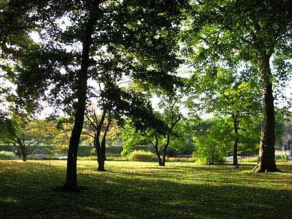 Fall scenery beautiful landscape