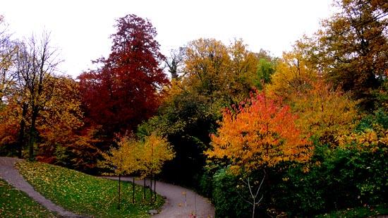 autumn-clipart-fall-photos
