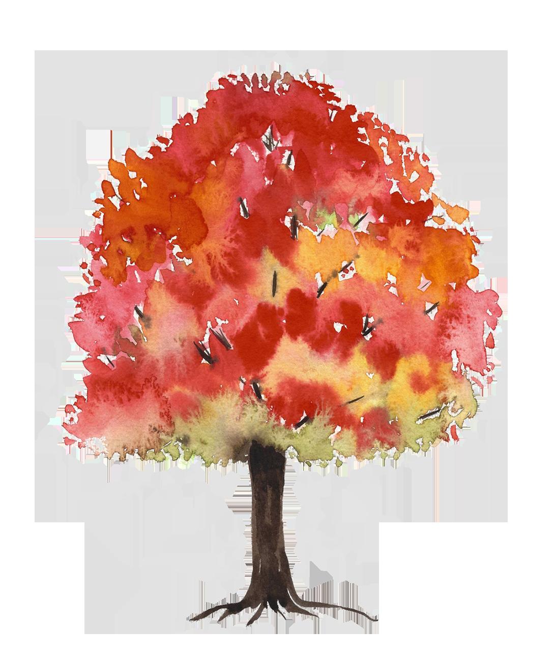 autumn tree watercolor