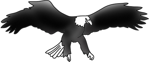 bald eagle landing drawings
