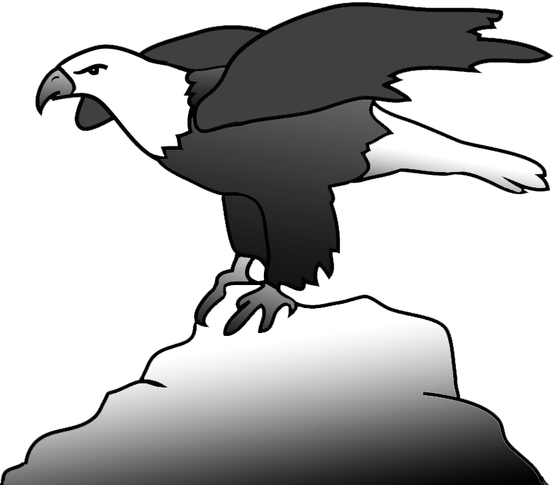 Bald eagle on a rock clipart