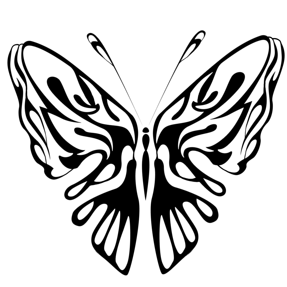 beautiful black hite coloring page butterfly