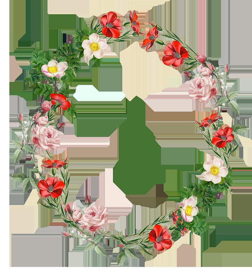 beautiful flower circle