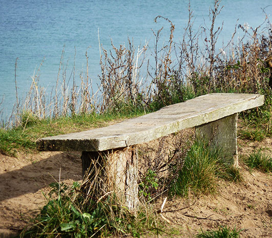 bench overlooking the autumn sea
