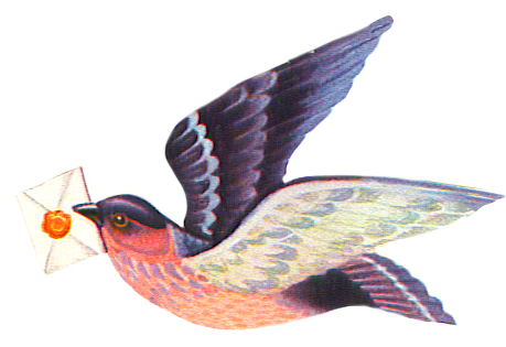 flying bird with letter
