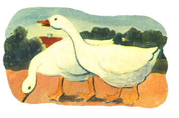 Old drawing of two geese