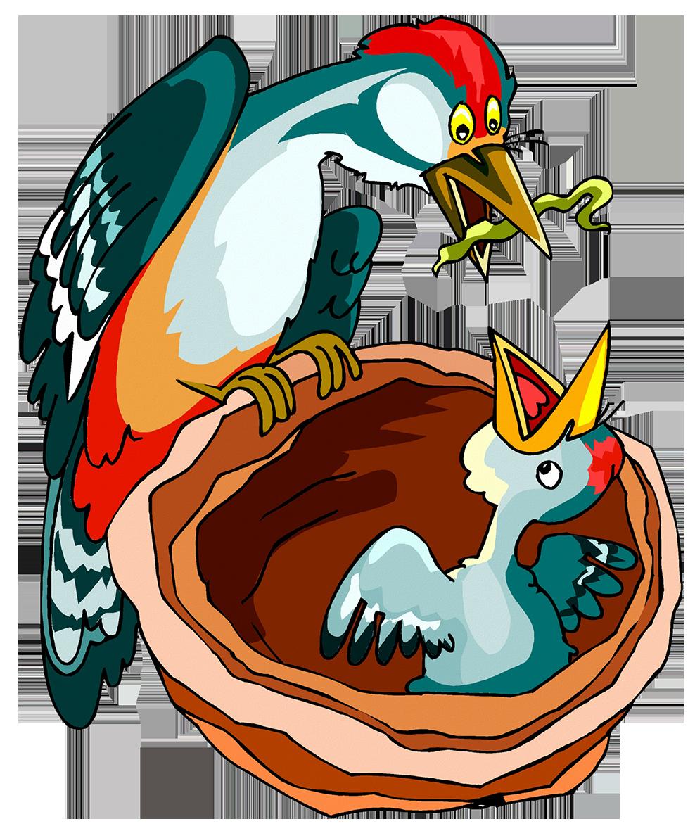 bird feeding chick with worm