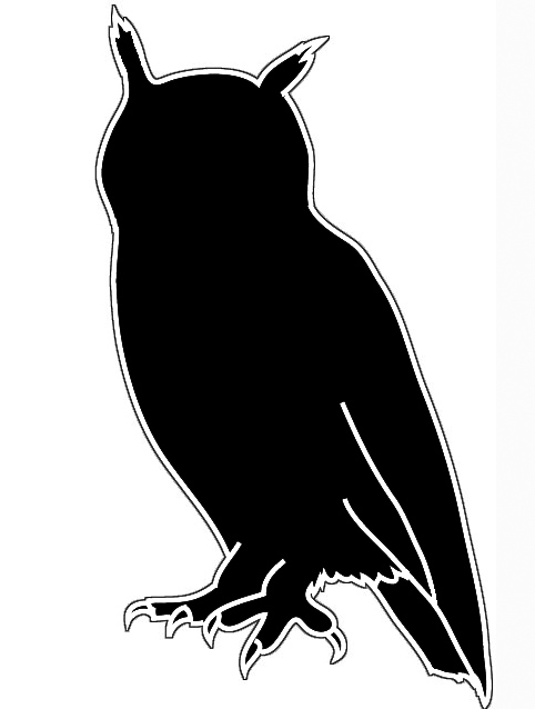 Bird silhouettes owl with outline