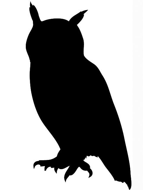 Owl silhouette black