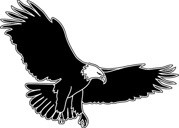 bird silhouettes eagle flying
