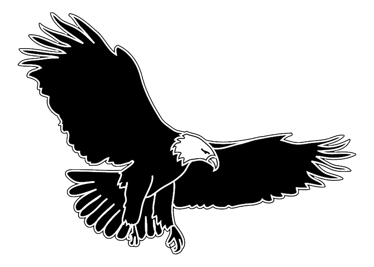 outlined bird silhouette bald eagle flying