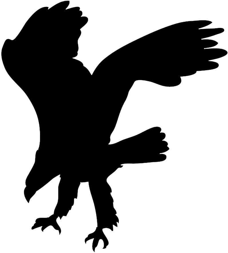 eagle silhouette hunting for prey