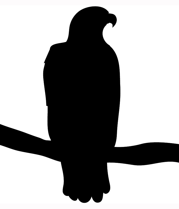 quail silhouette clip art - photo #45